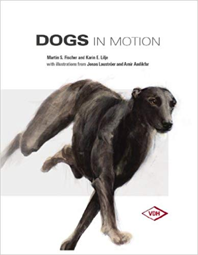 dogs in motion.jpg