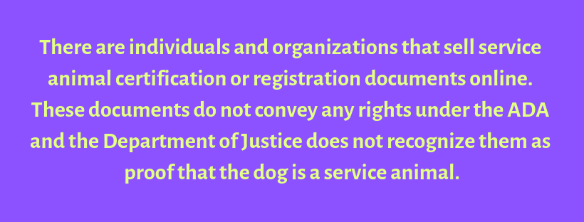 There are individuals and organizations that sell service animal certification or registration documents online. These documents do not convey any rights under the ADA and the Department of Justice oes not reco.png