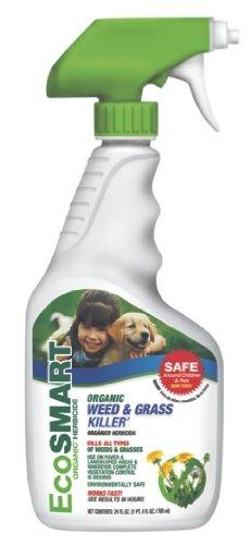 eco weed spray.jpg