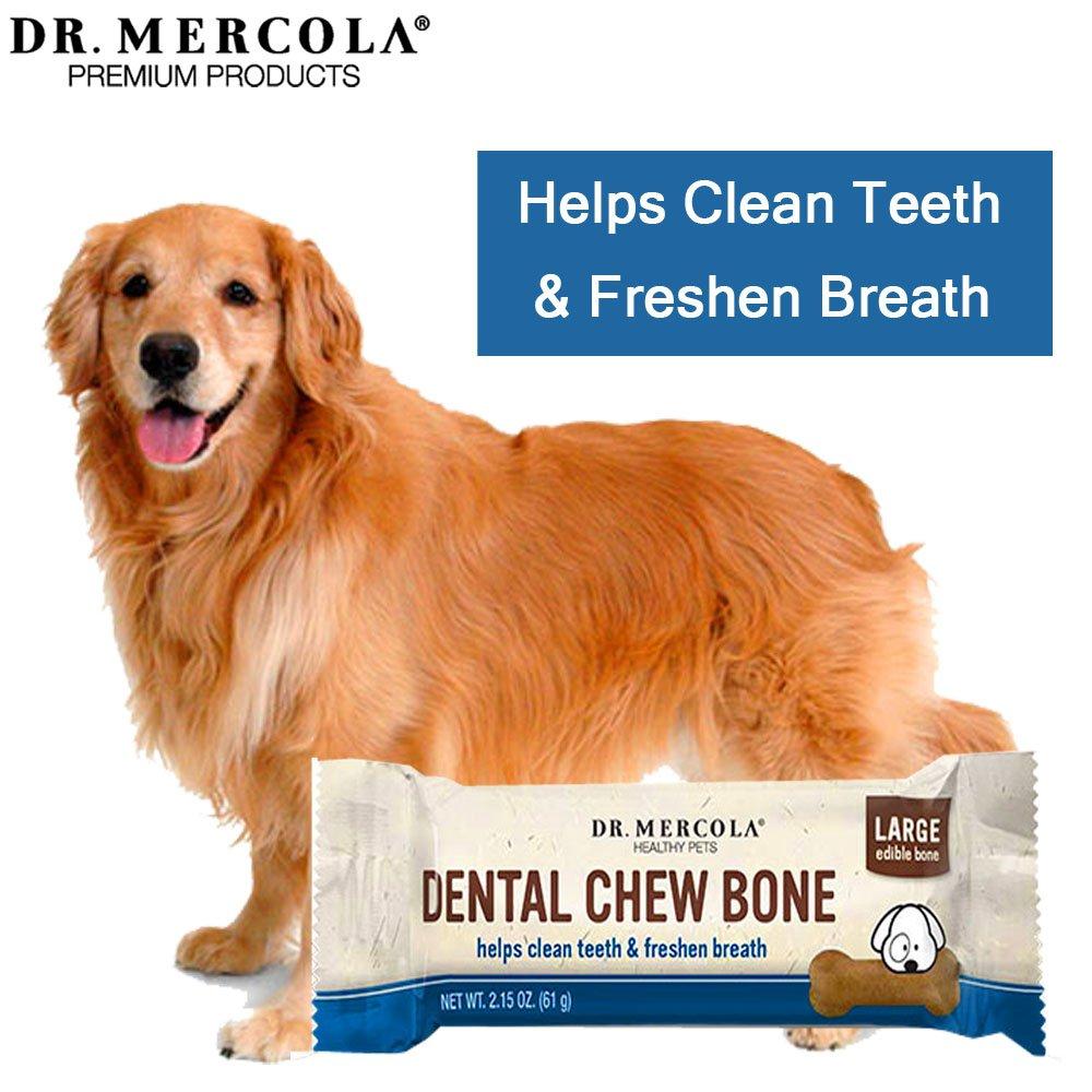 dental bone lg 2.jpg