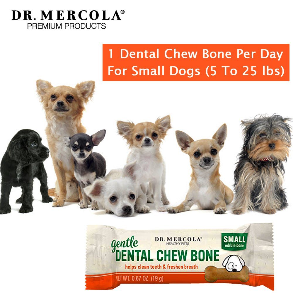 DENTAL BONE GENTLE SM.jpg