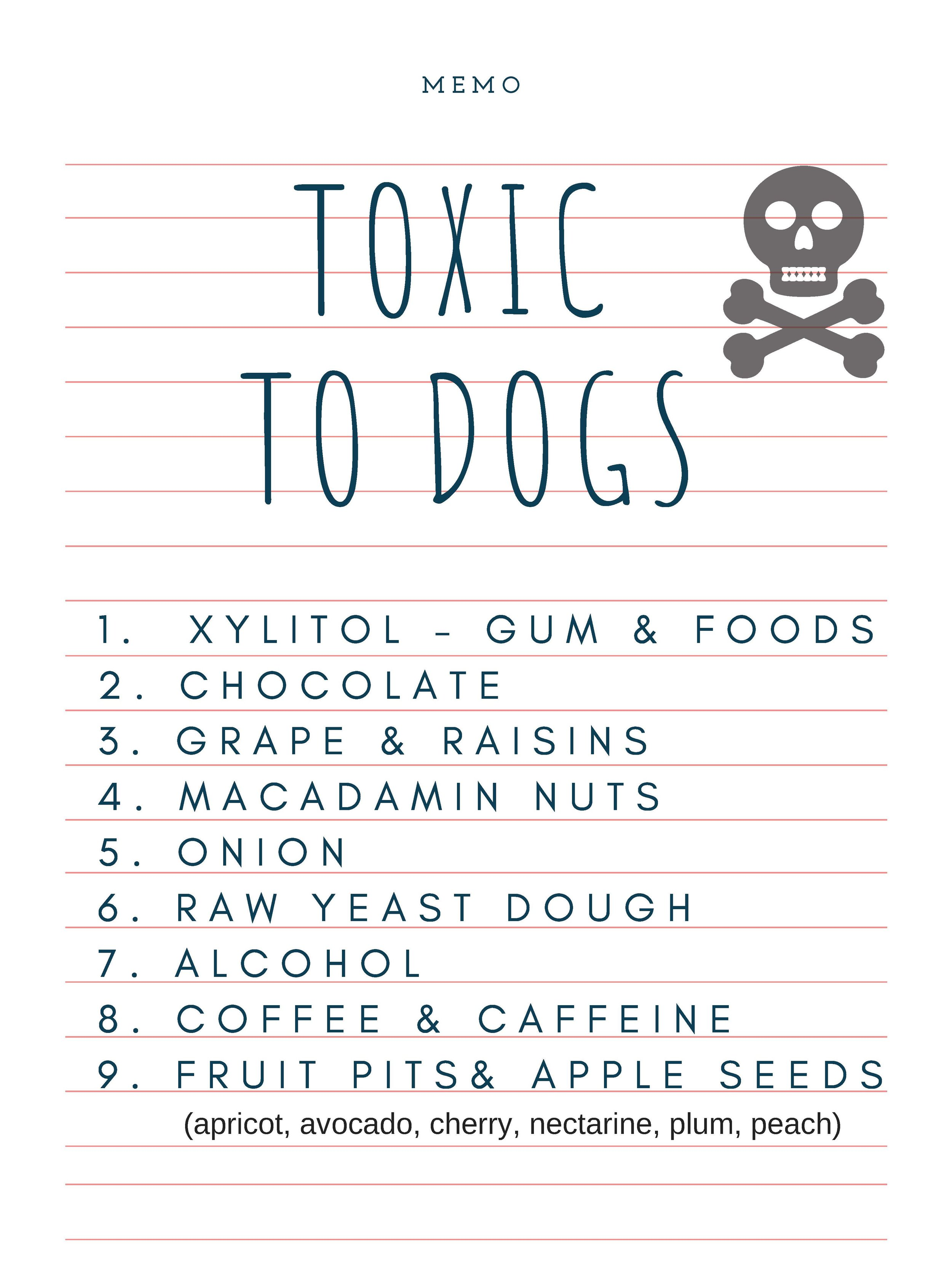 Ingredients To Avoid — Homeskooling 4 Dogs