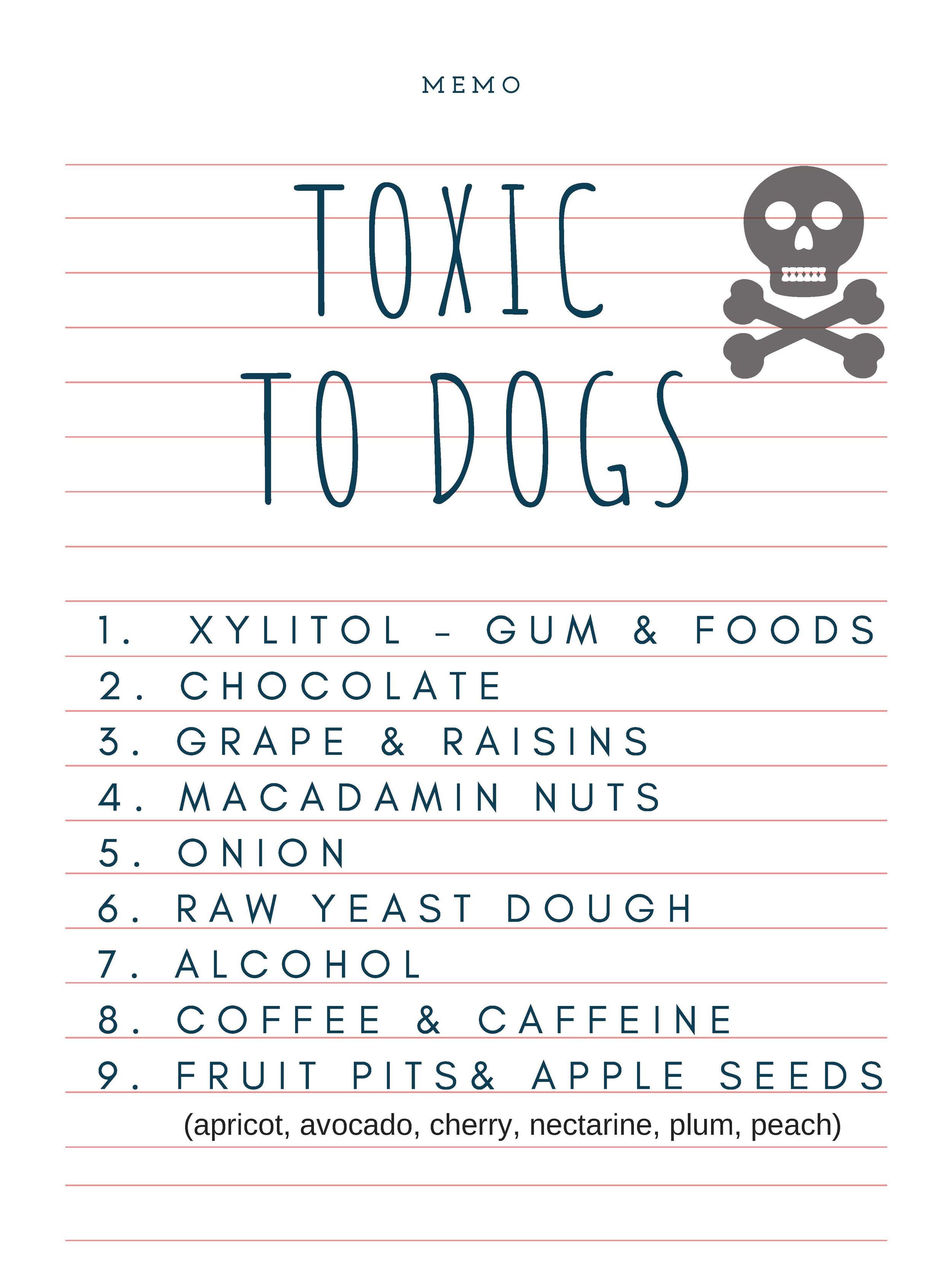 toxic foods.jpg