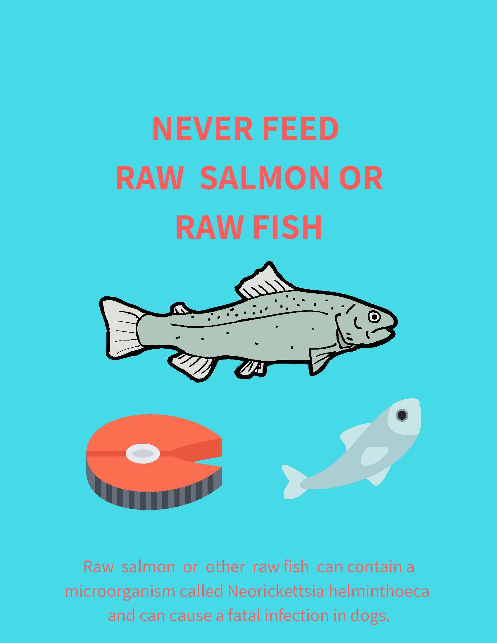 raw fish.jpg