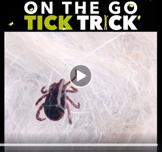Screenshot_2019-06-08 TICK REMOVAL HACK.png