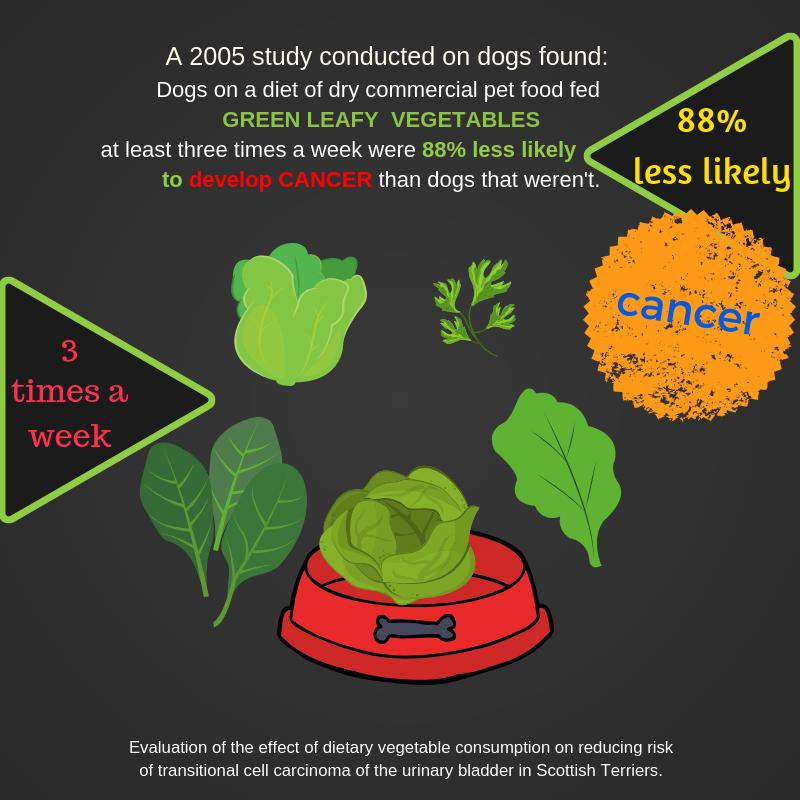 88 percent veg.png