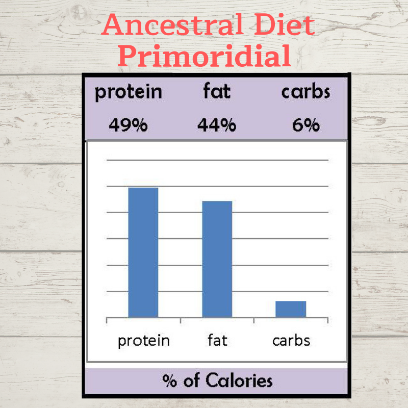 ancestral diet graph.png