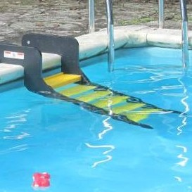 PM-6-In-Ground-Pool.jpg