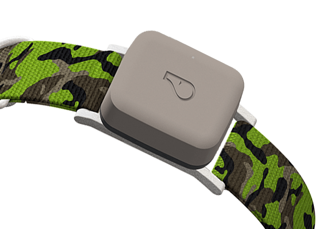 go-device-collar-taupe-min.png