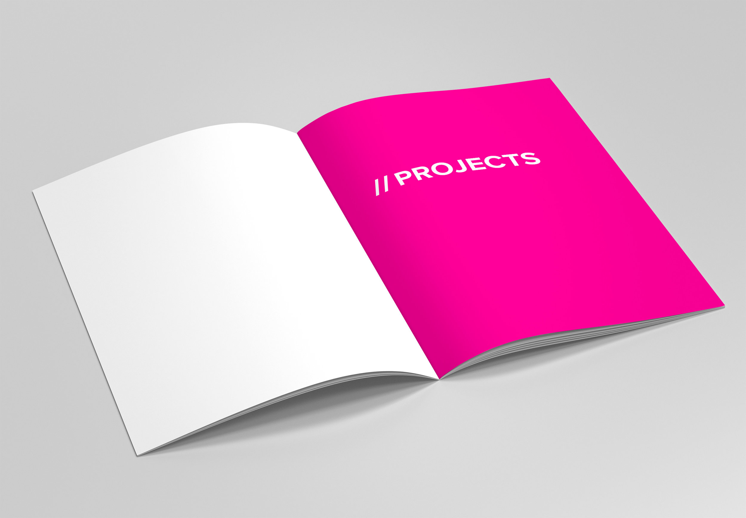 Booklet-Proj2-fixed.jpg