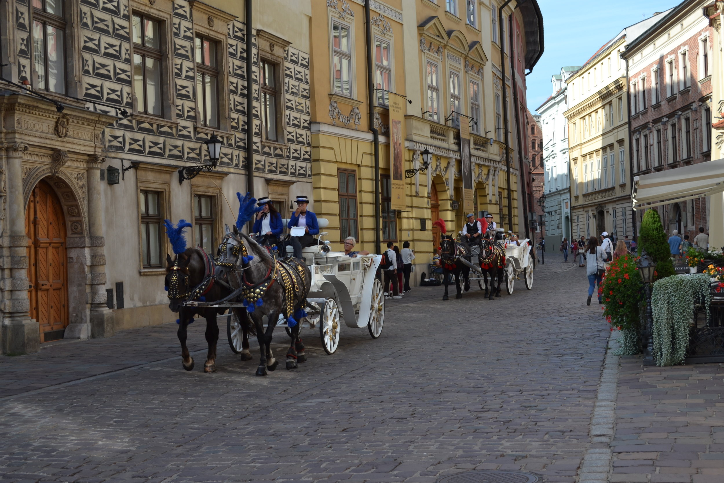 Horse Ride Krakow