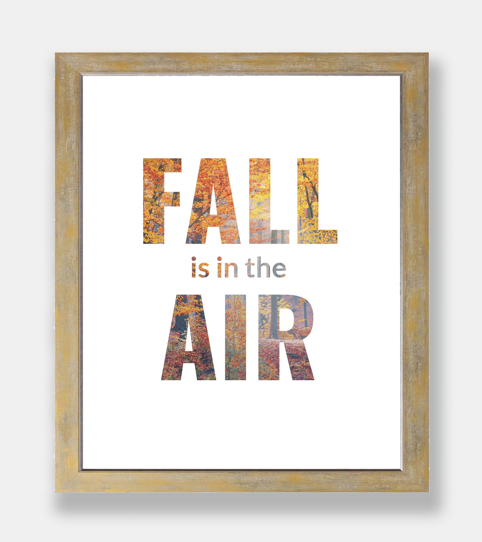 Fall-is-in-the-air_frame1