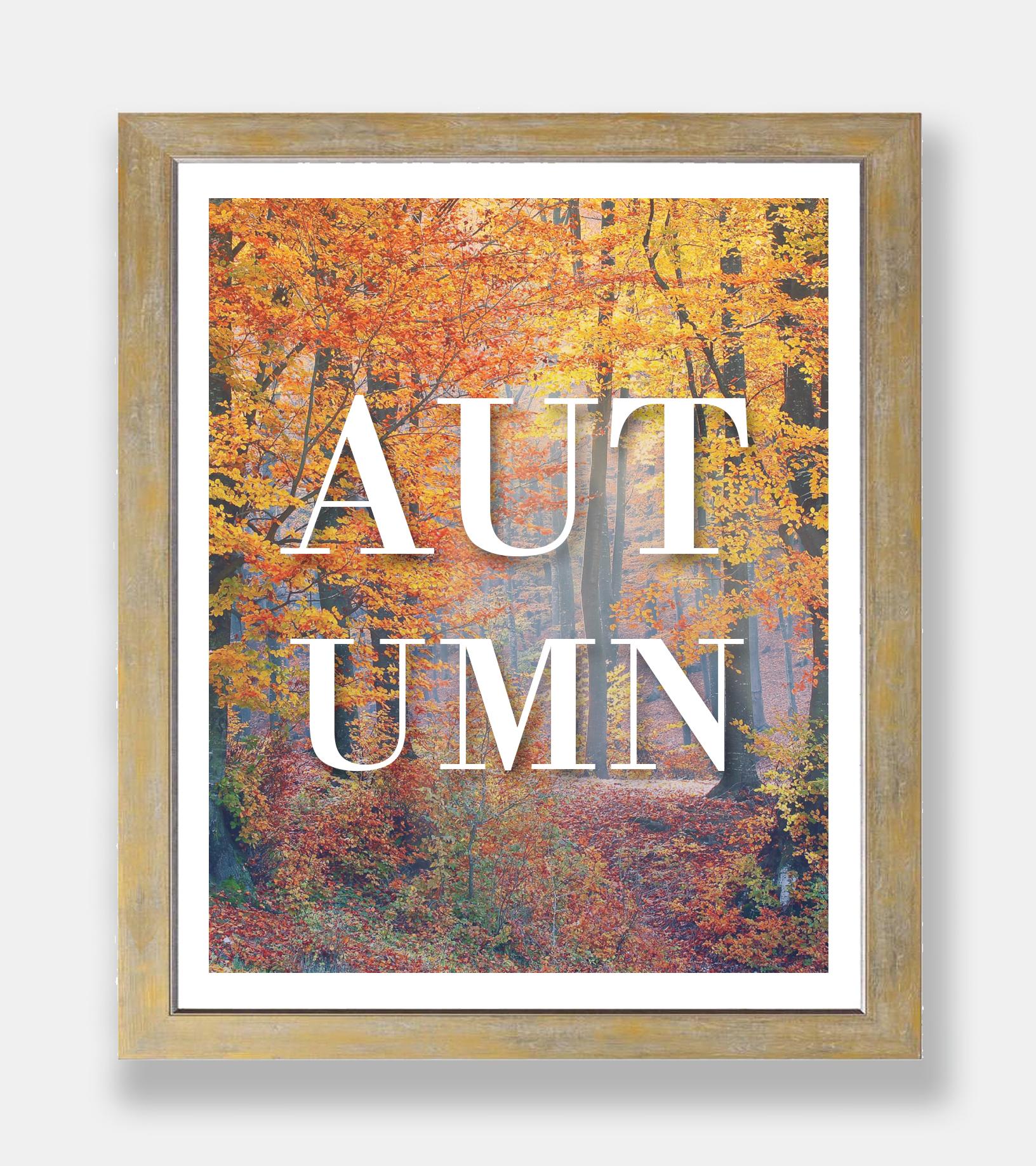 Autumn-frame3