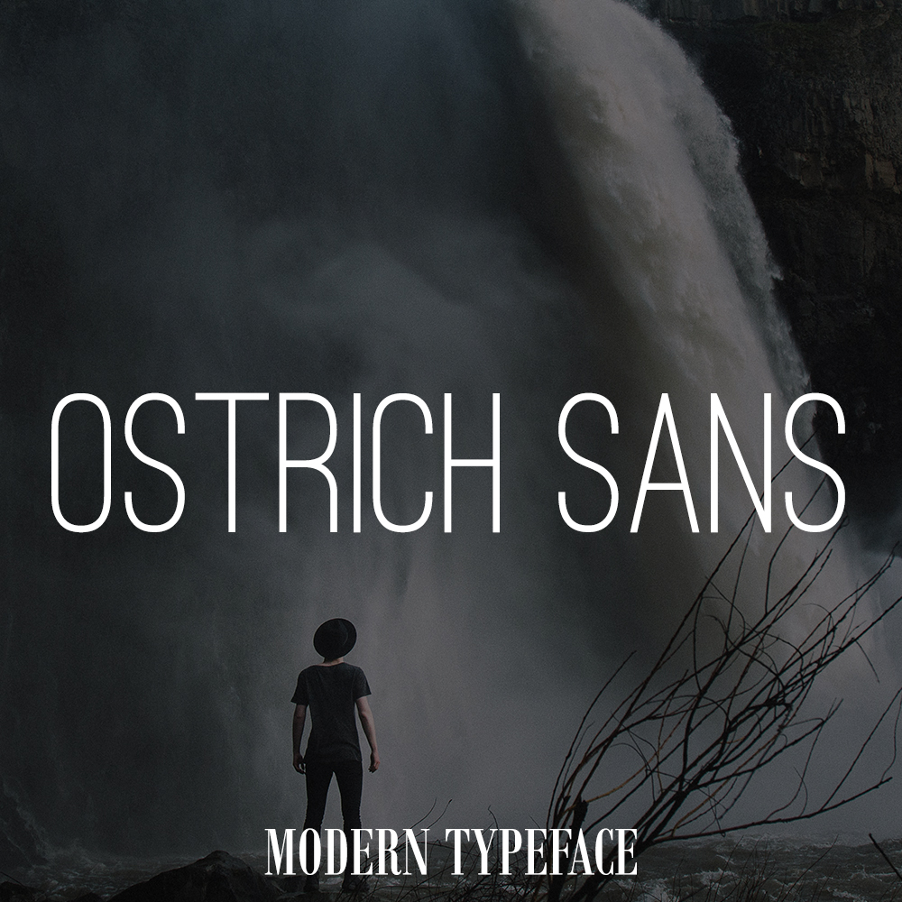 ostrich-font