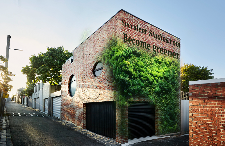 Succulent Outdoor idea Final.png