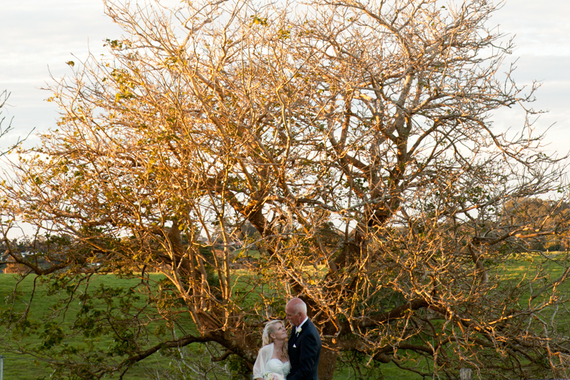 Montville-Maleny-Wedding-Photographer-55.jpg