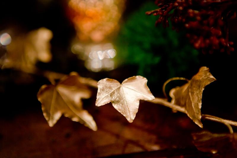 Noosa-Wedding-Lindy-Photography-497.jpg