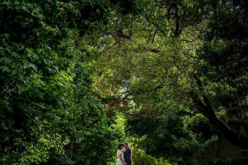 Spicers_Clovelly_Montville_Wedding 315