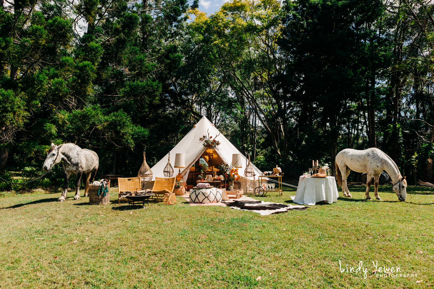 Noosa Hinterland Weddings 77.jpg