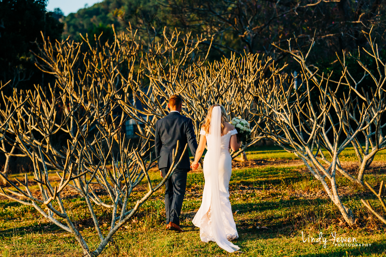 Rocks-Yandina-Weddings-Jess-Jake 532.jpg