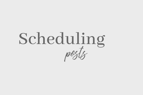 Schedule. - Scheduling is the number one tool that we ADORE. What we will do for you, is create a week or two worth of posts. Content that matches your voice and your theme on Instagram, Facebook, etc. This can also help with being consistent. Let us take the hastle off of you!