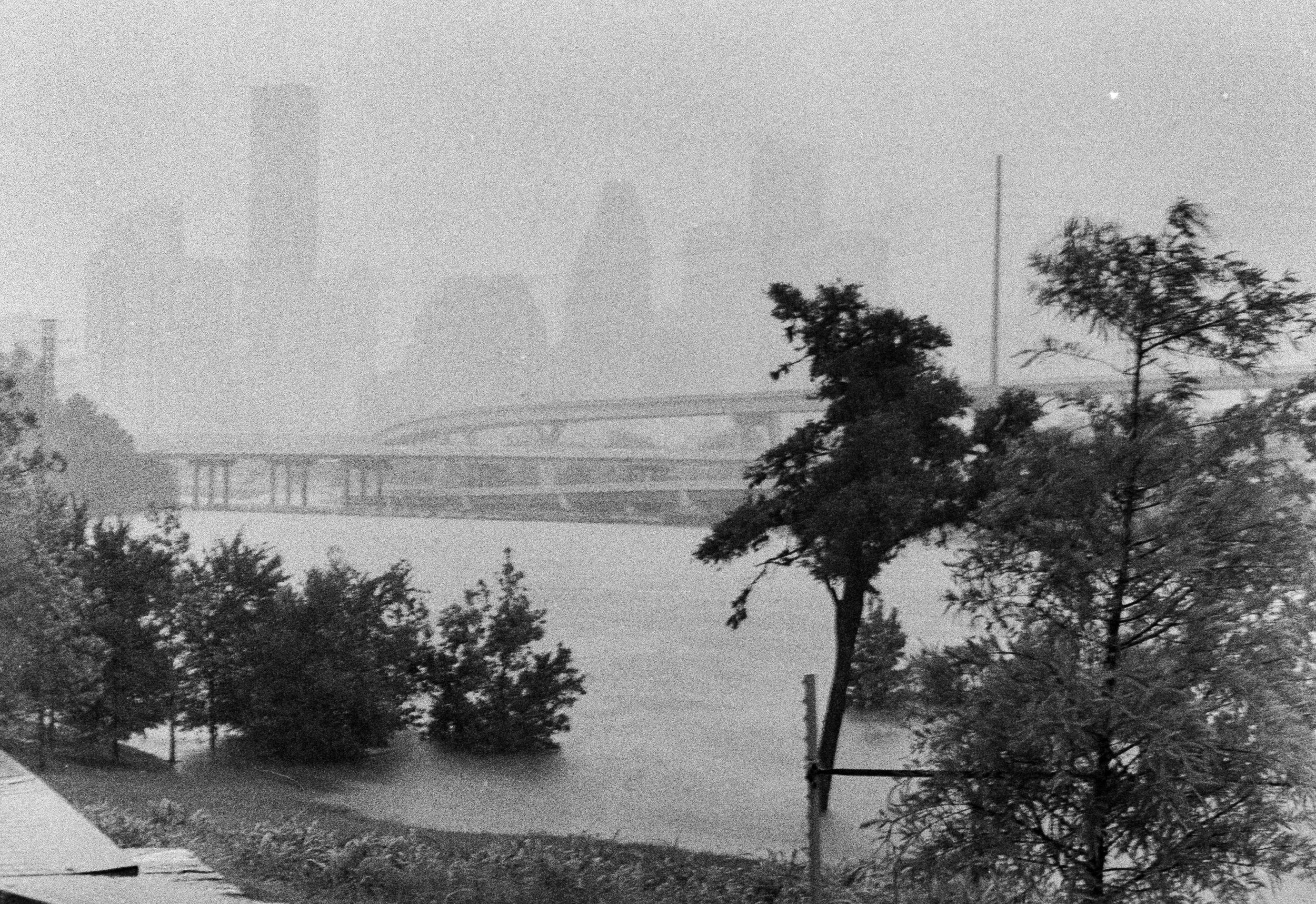White Oak Bayou Houston Harvey Flood
