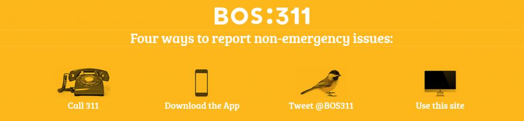 Bos311