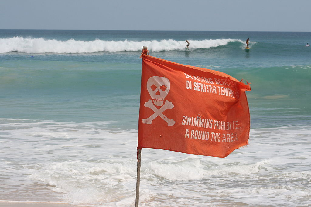 Bali_Swimming_Flag.jpg