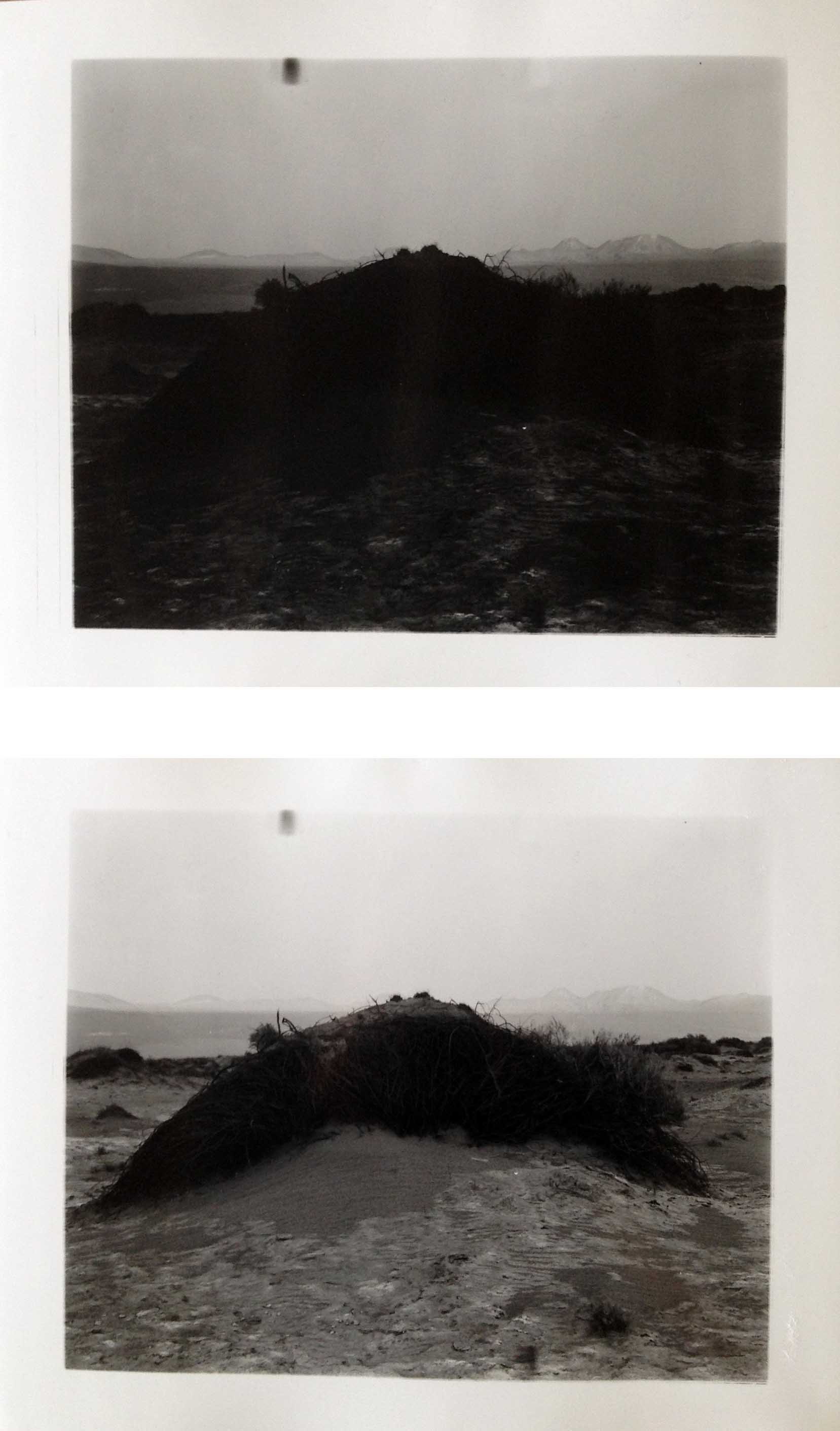 "Atacama Mound, 2016  silver gelatin prints  8 x 10"" diptych"