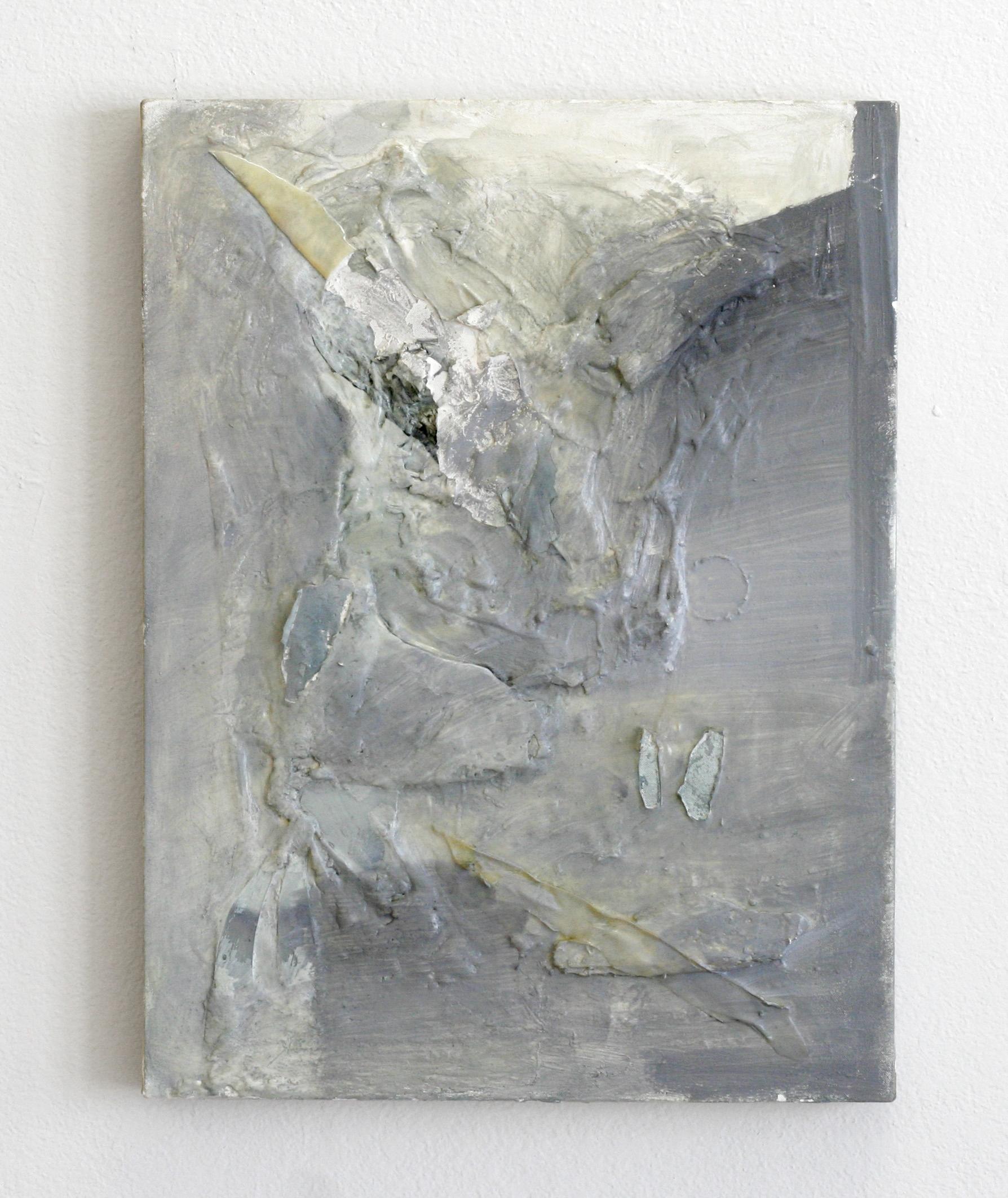 "Lithosphere , 2014  acrylic, polymer, plaster  18 x 30"""
