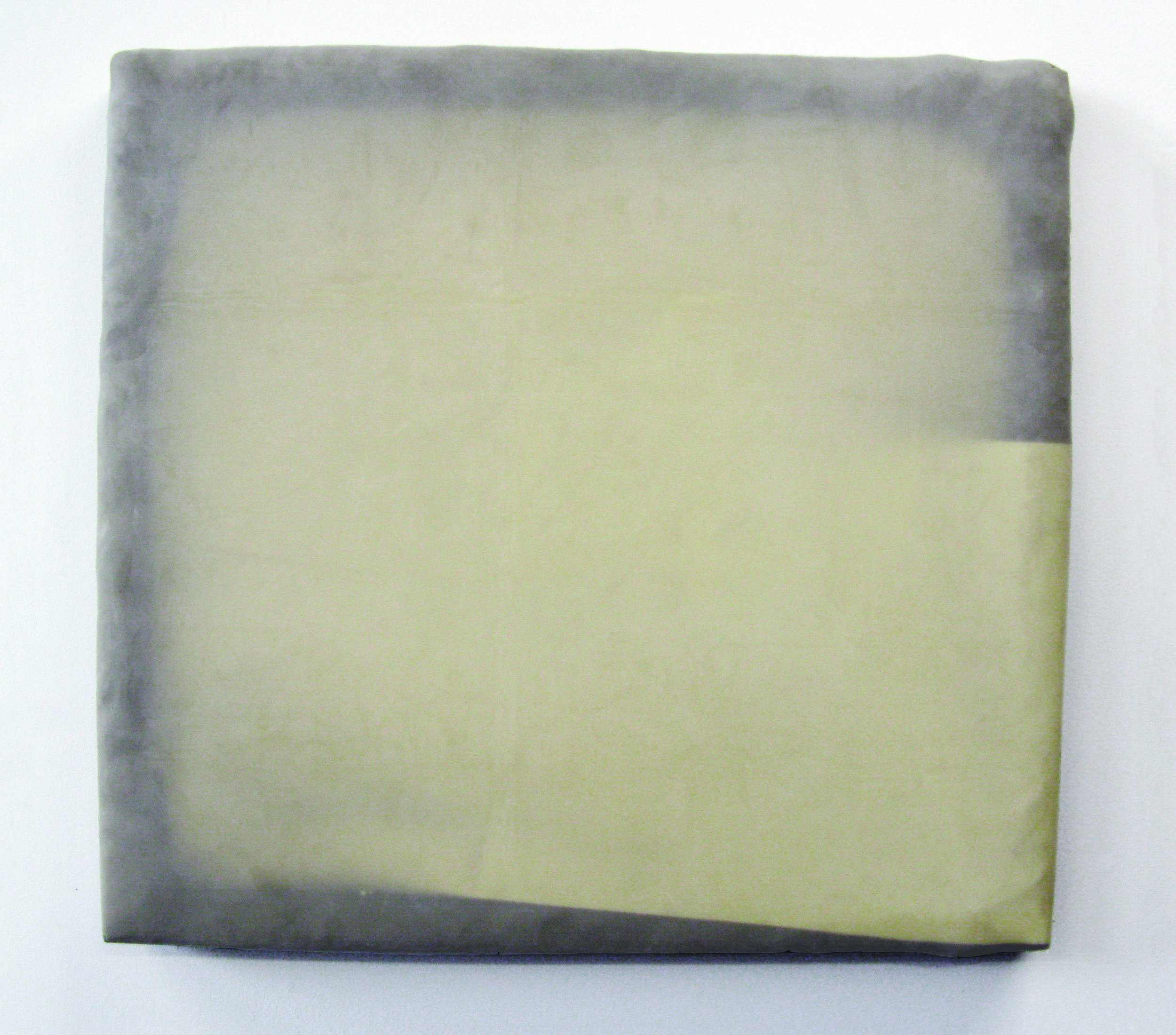 "Focus (II), 2010  wood, plastic, latex sheet, mylar  24 x 22"""