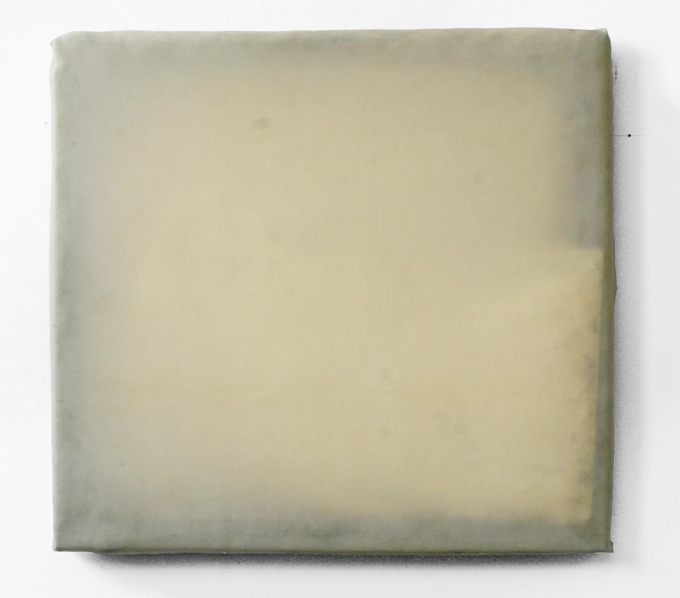 """Focus (III), 2010  wood, plastic, latex sheet, mylar  24 x 22"""""""
