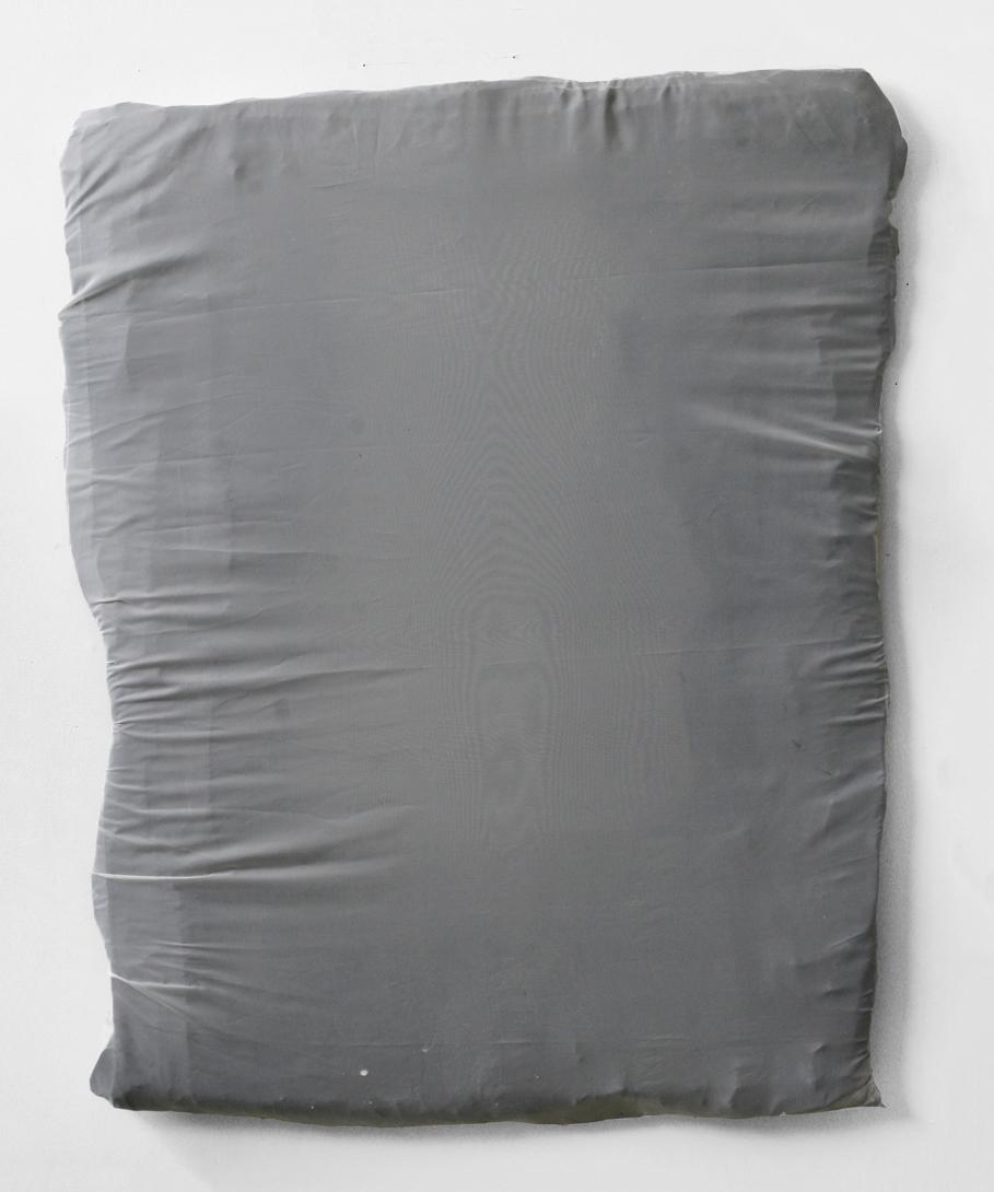 "Untitled, 2011  wood, resin, fabric, acrylic  26 x 40"""