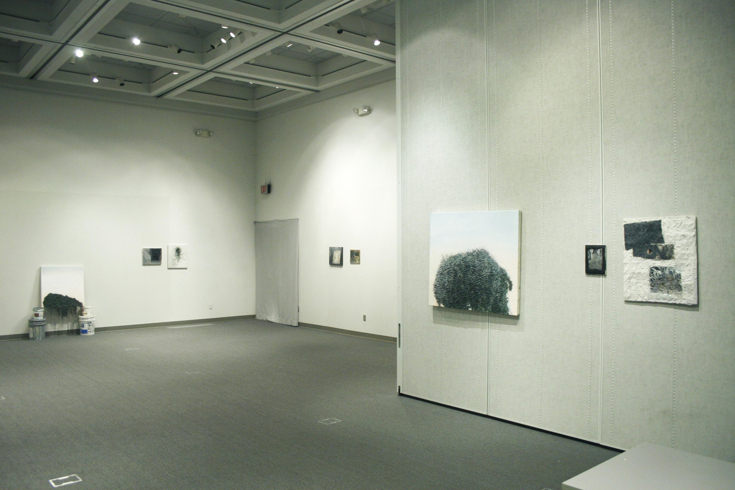Installation view, 2014   Grays Pinks & Blues   Jones Gallery, Bakersfield