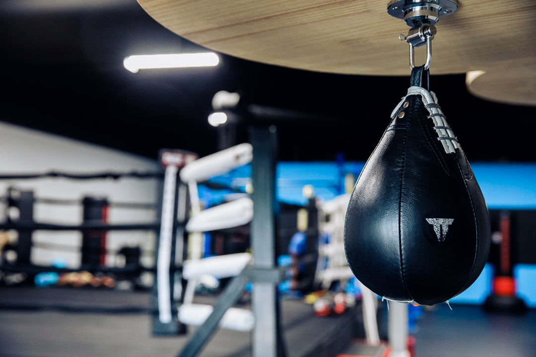 Speed bag and ring.jpg