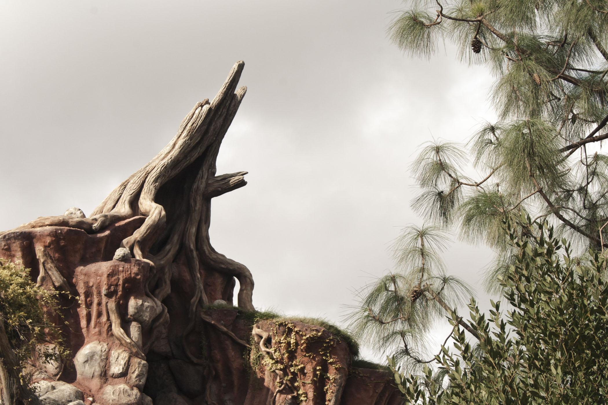 Disneyland2011_018.jpg