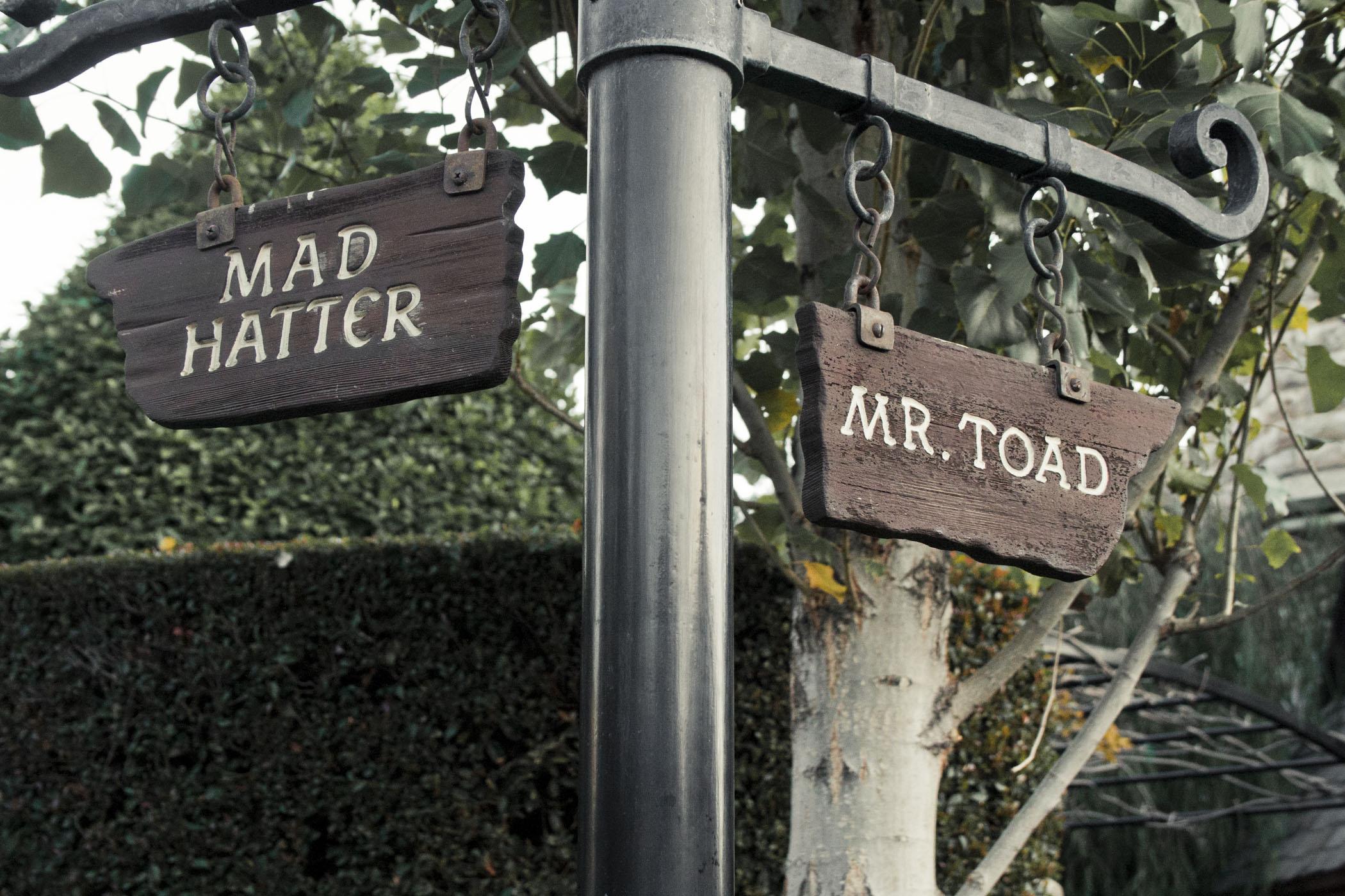 Disneyland2011_046.jpg