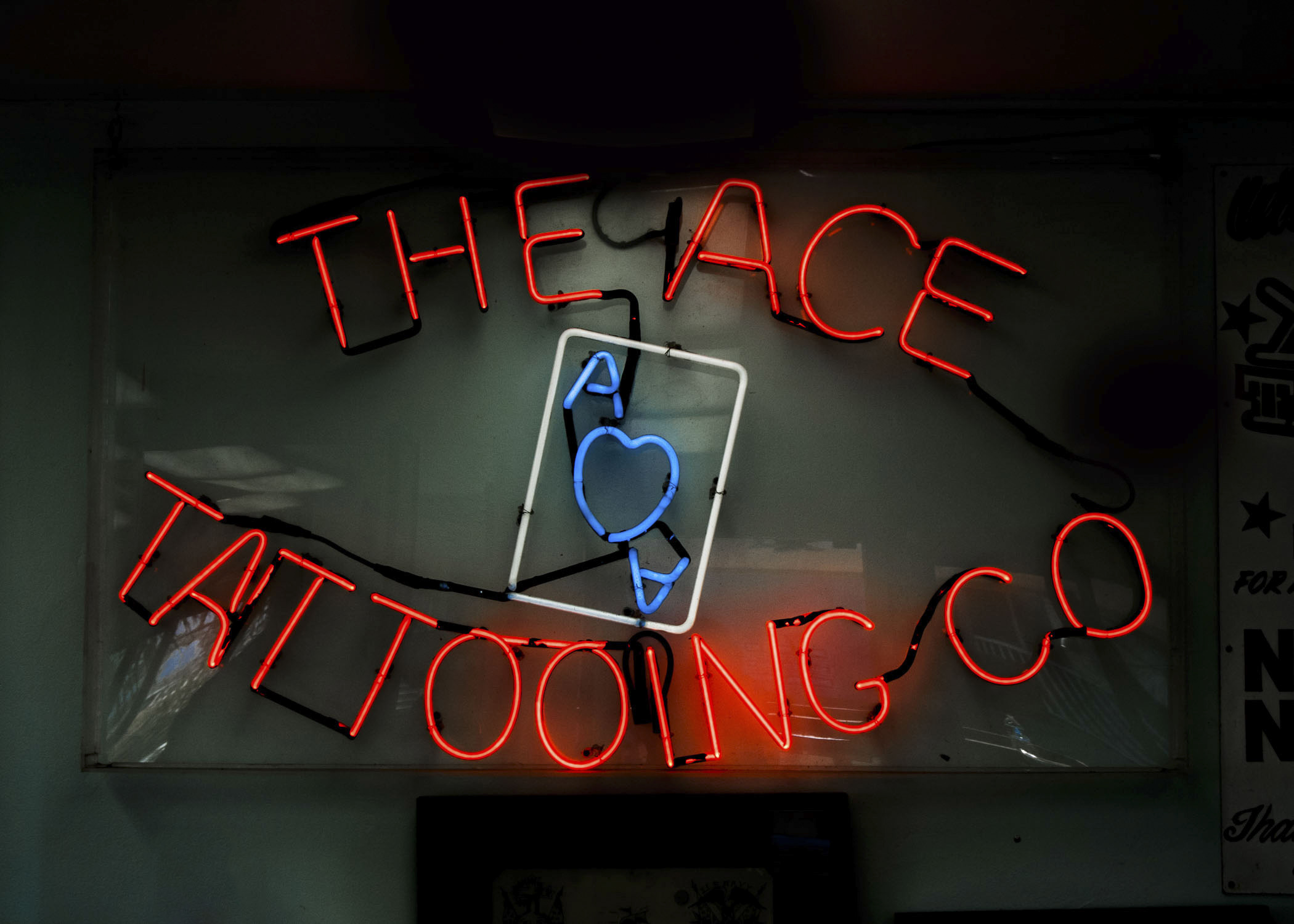 ace_000b.jpg