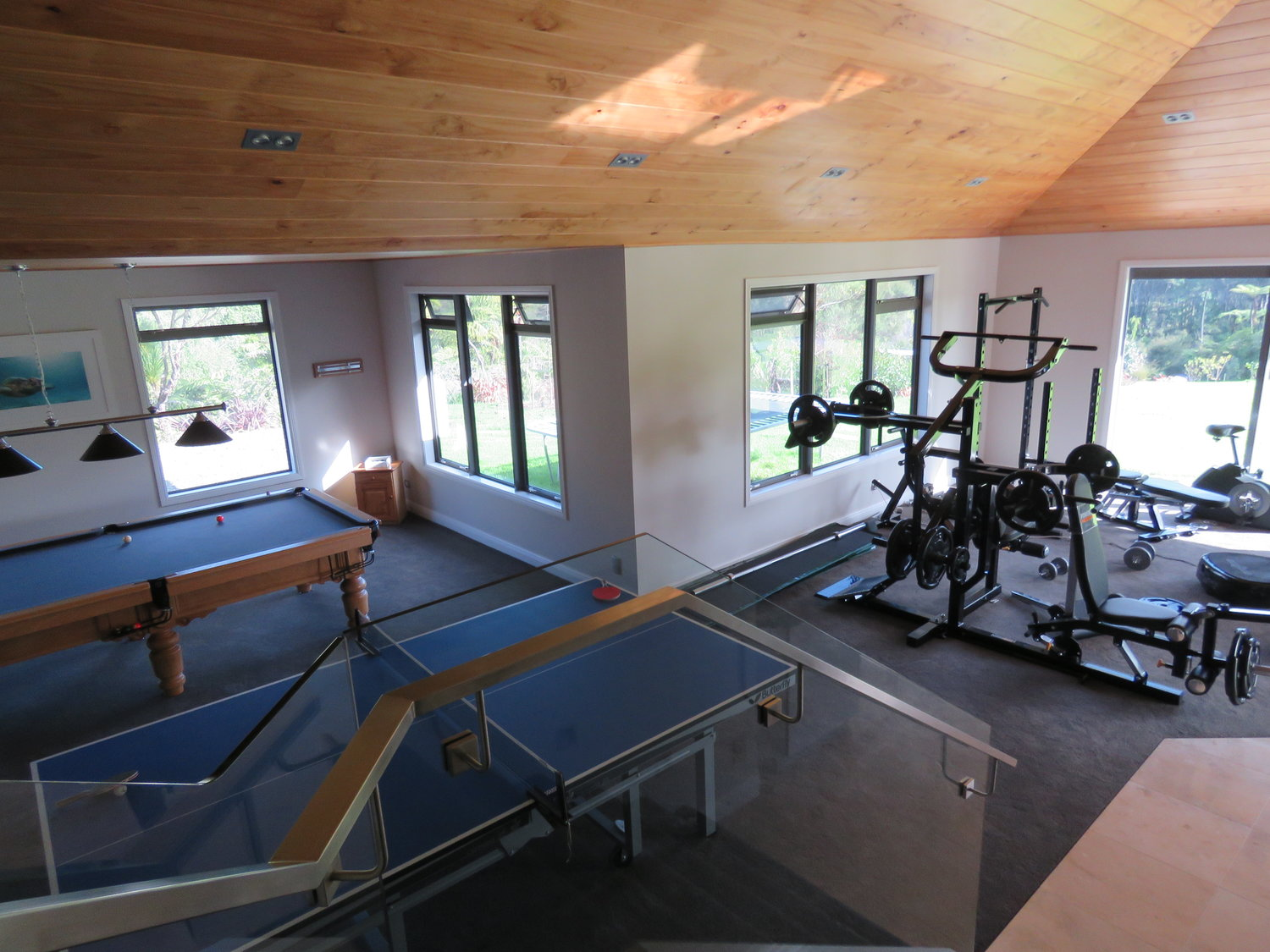 Albany Games room and gym