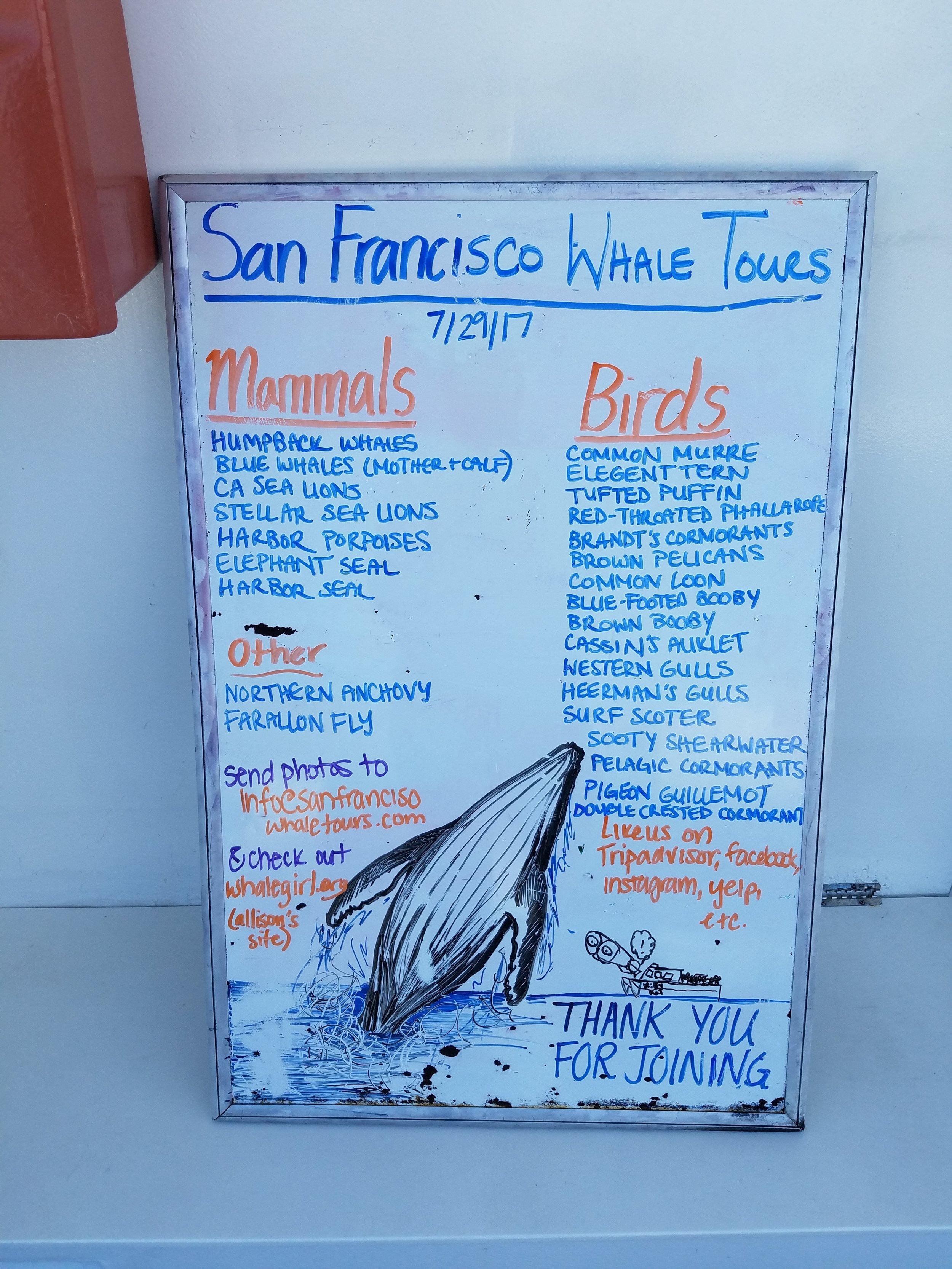 Full sightings list.