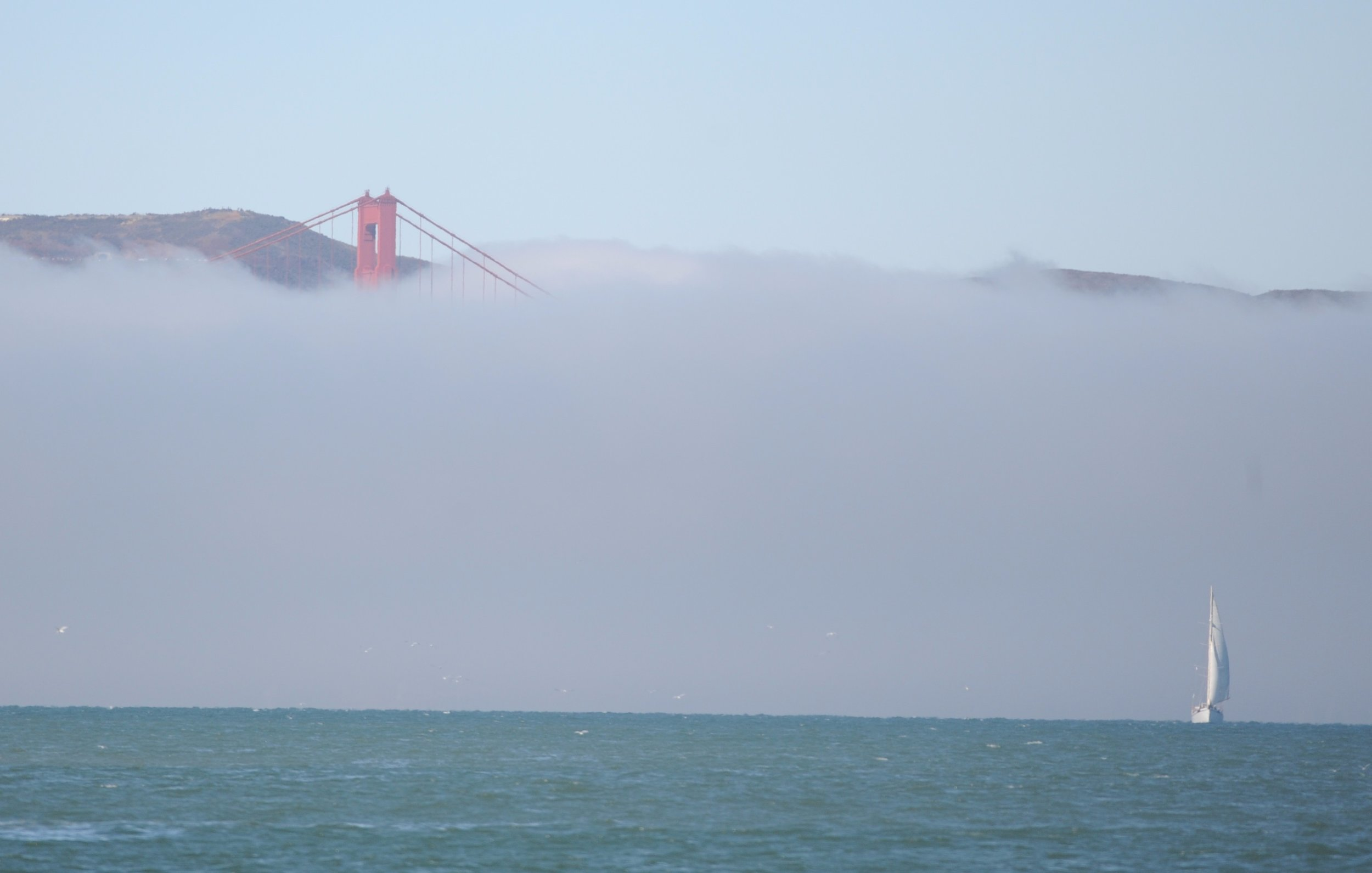 Fog waiting by the Golden Gate.
