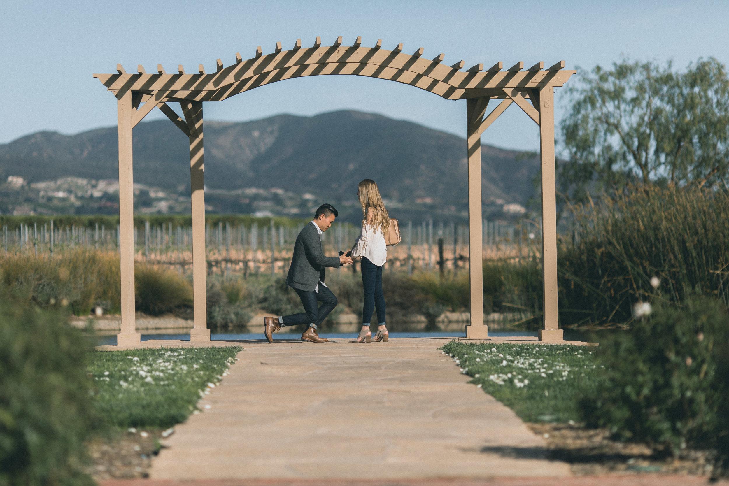Sam & Rachael Proposal-14.jpg