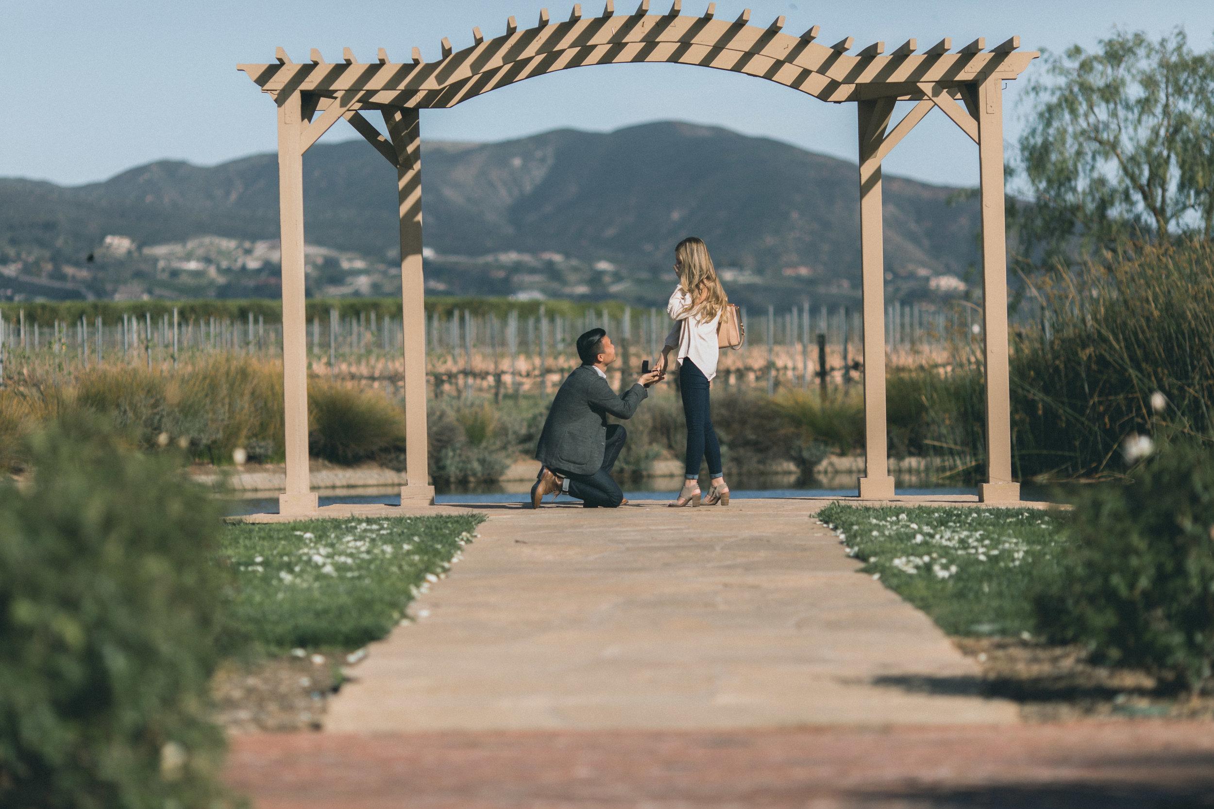 Sam & Rachael Proposal-16.jpg
