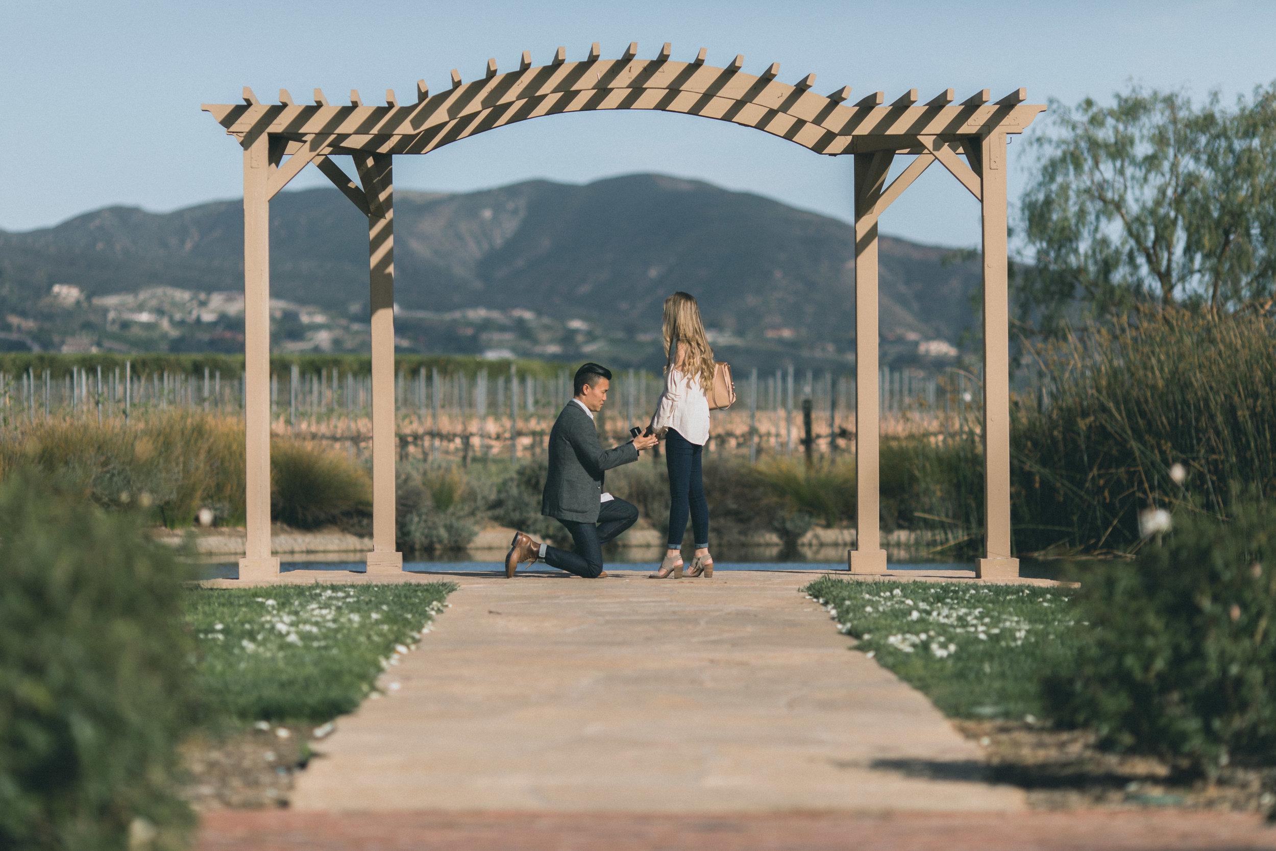 Sam & Rachael Proposal-15.jpg