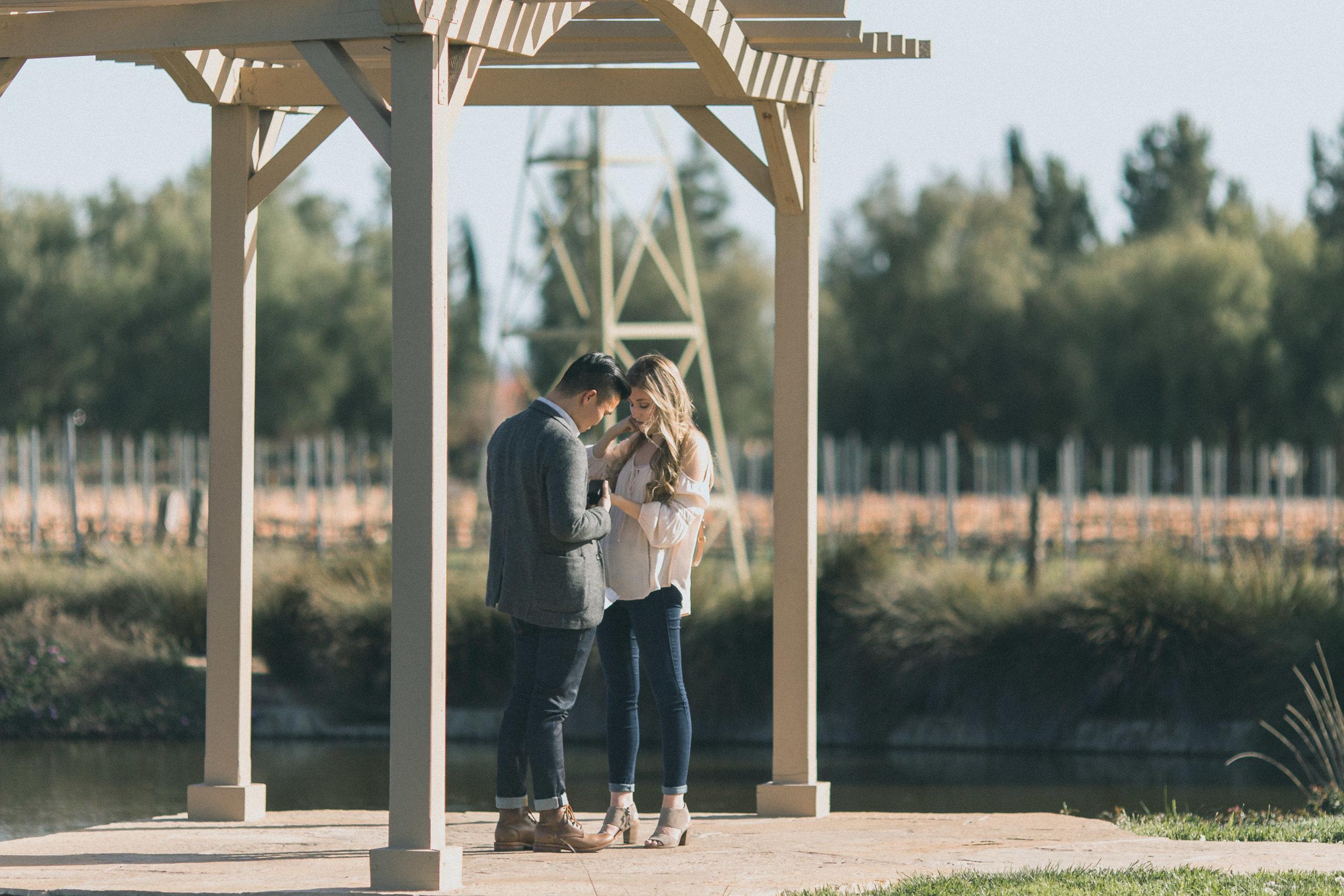 Sam & Rachael Proposal-29.jpg