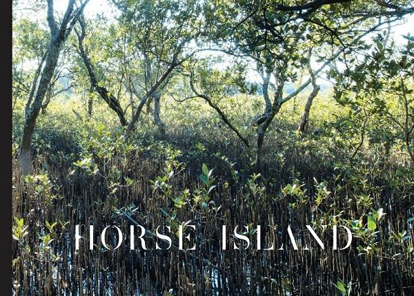 christina-kennedy_horse-island.jpg