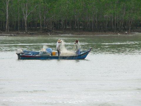fishing is still a lifeline at kukup village.jpg