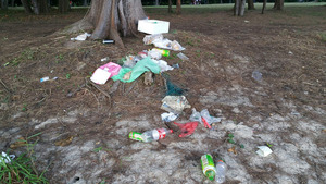 Plastic disposables continue to choke coastal areas such as this picnic spot in Tanah Merah, Singapore. Image: NUS ToddyCats.