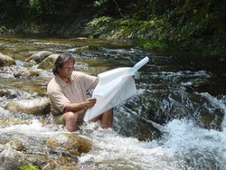 Hitesh: Harmonizing people with nature.