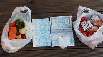 PicknBin packs 5 wet wipes & five bags in a neat little kit.